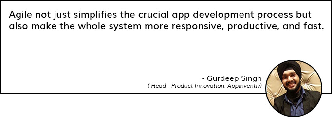 Quote on Agile Dvelopment