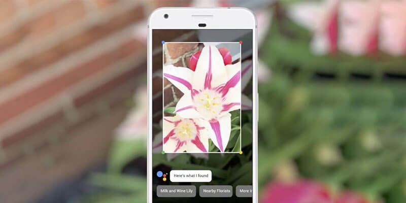 With New Google Assistant Use Camera to Know about Things