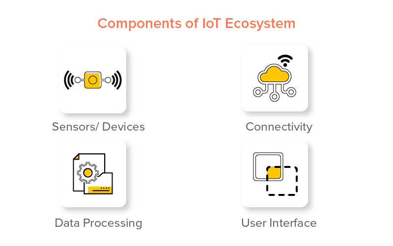 Components of IoT Ecosystem