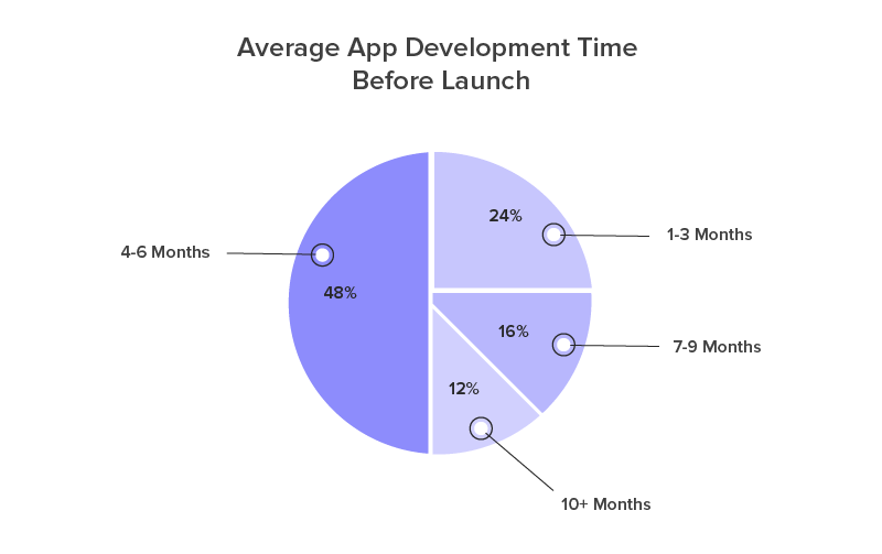 Average app development Time before launch