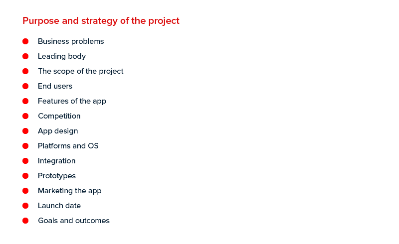 Purpose and Strategy of the Project