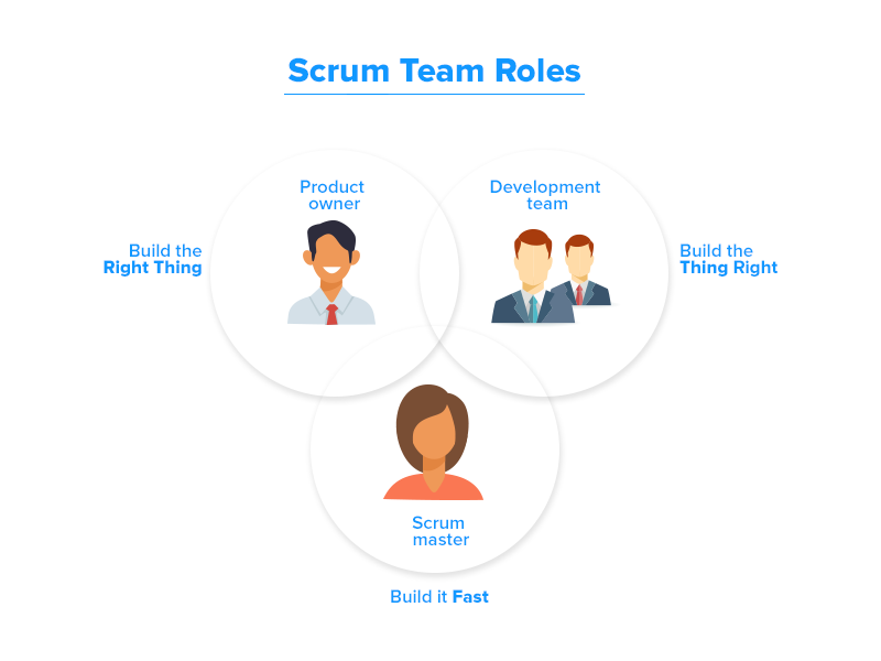 Scrum team roles