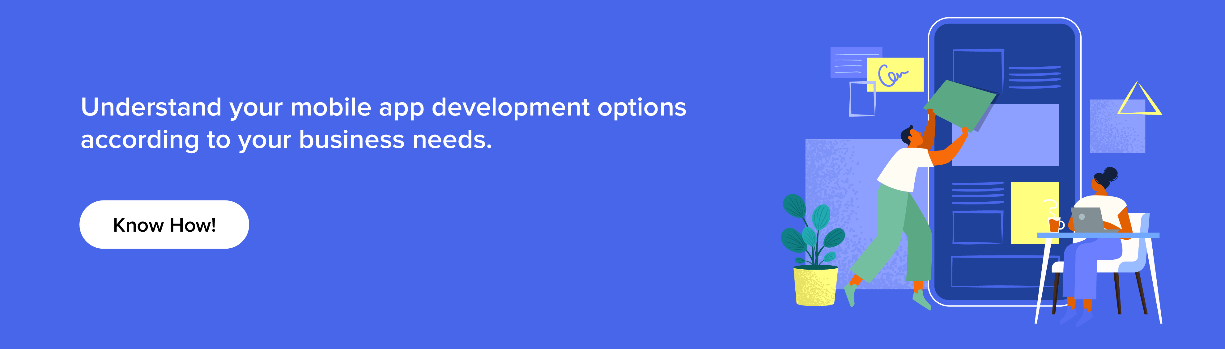 understand your mobile app development option