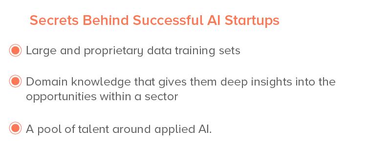 Secrets Behind Successful AI Startups