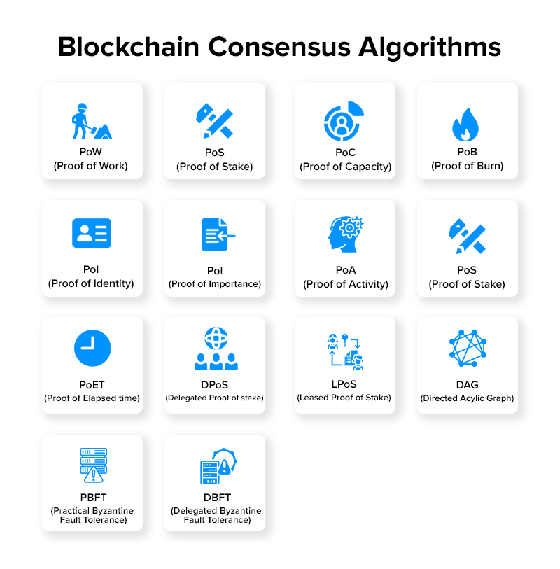 Blockchain Consensus Algorithms