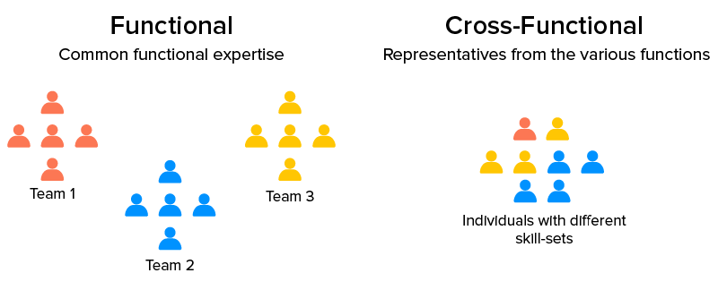 Cross-functional Team