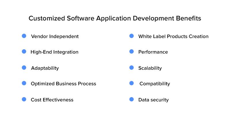 Customized Software Application Development Benefits