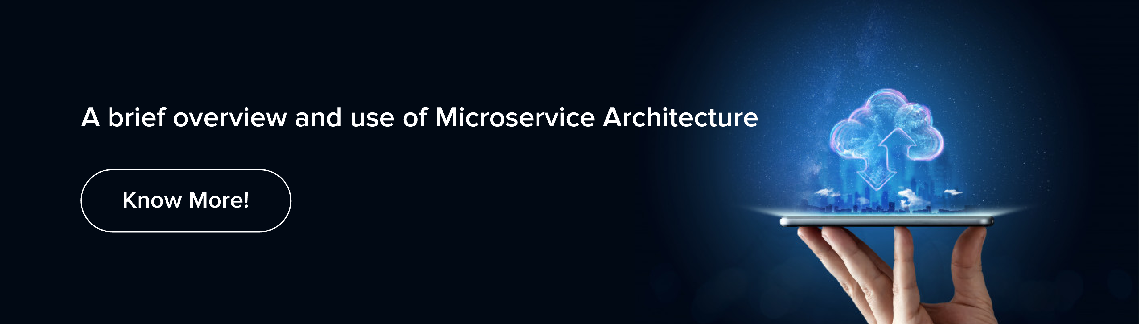 use of Microservice Architecture